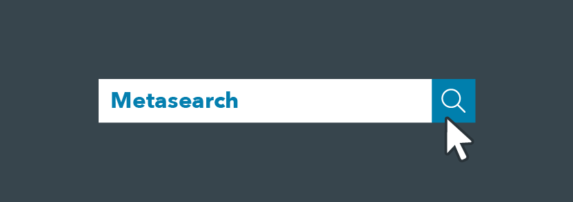 Una barra di ricerca con la scritta metasearch