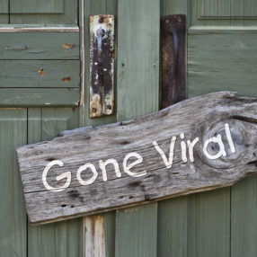 "A B&B's turquoise wooden door with a ""gone viral"" sign on it."