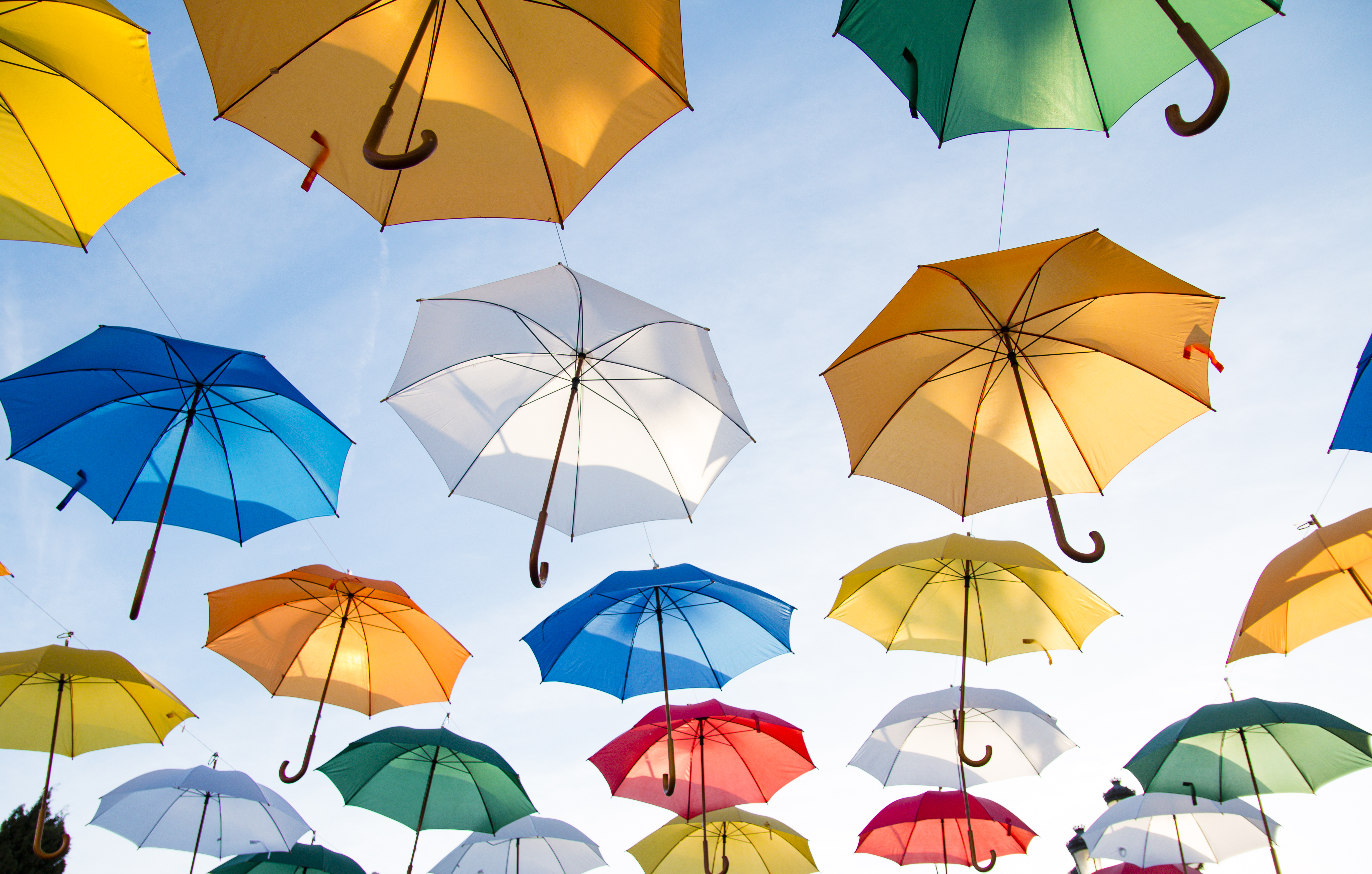 Des parapluies d'une multitude de couleurs