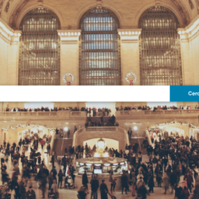 L'affollata Grand Central e la barra di ricerca di un metasearch