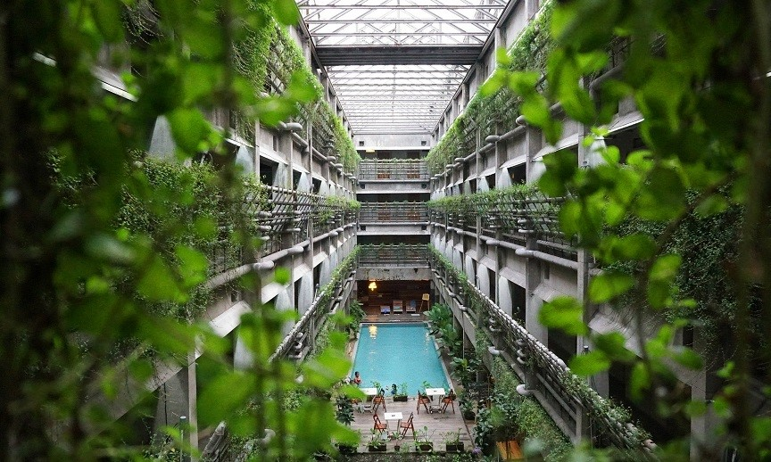 La piscine d'un hôtel écologique, entourée de plantes.