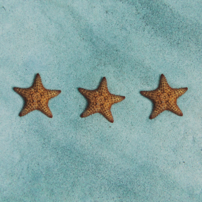 Three starfish on the ocean floor look like hotel stars