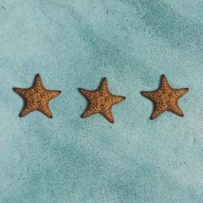 Τρεις αστερίες στον πυθμένα του ωκεανού μοιάζουν με αστέρια ξενοδοχείου