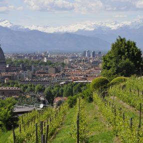 Incontro trivago con gli albergatori di Torino e il Piemonte